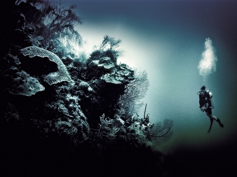 personal cayman islands, underwater photography